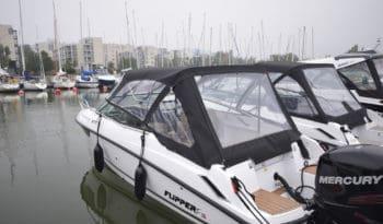 Flipper 670 DC voll