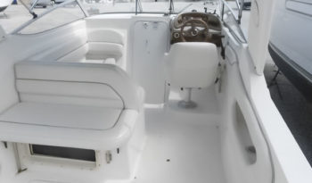 Wellcraft 26 Cabin Cruiser voll