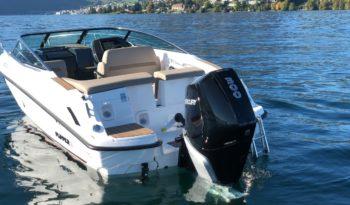 Flipper 670 Daycruiser voll