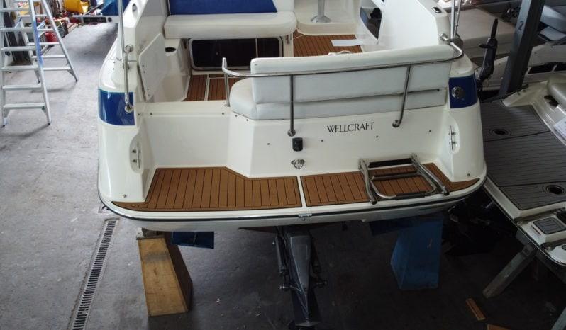 Wellcraft 26 Cruiser voll