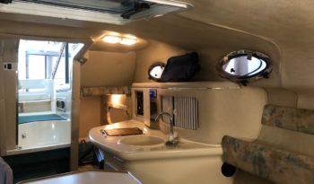 Sea Ray 255 Cruiser voll
