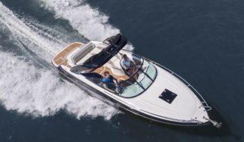 Viper 263 Motorboot voll