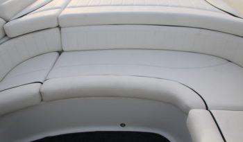 Viper V 750 Aussenborder voll