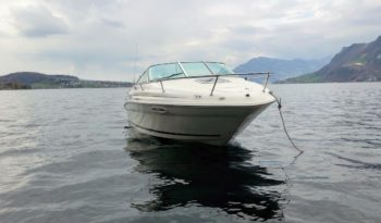 Sea Ray 215 Express Cruiser voll